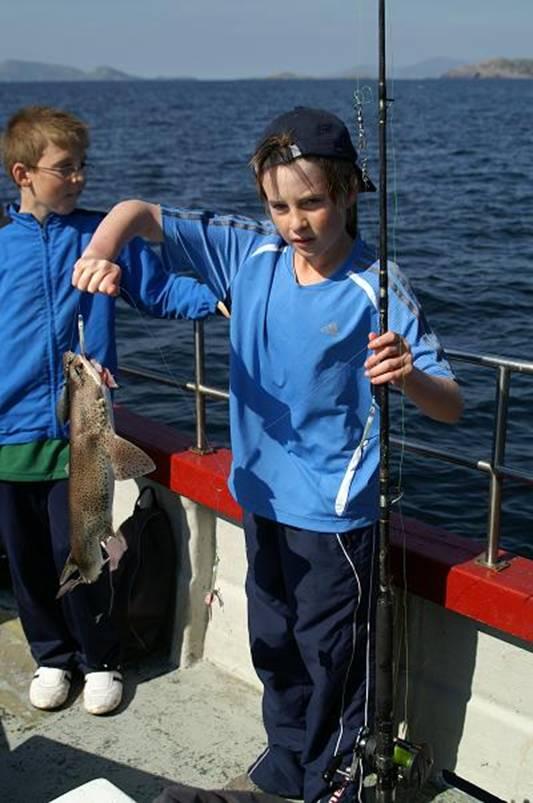 carevan te koop gevraagd bij vis rijk water